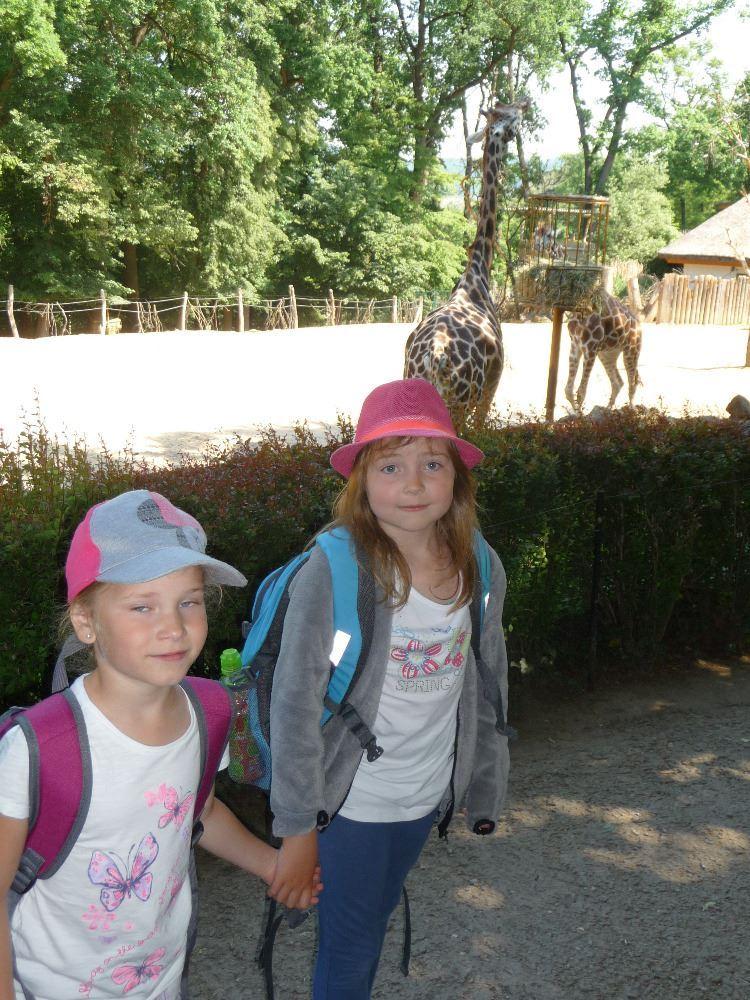 Školní výlet – ZOO Lešná