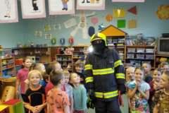 hasic-v-ms